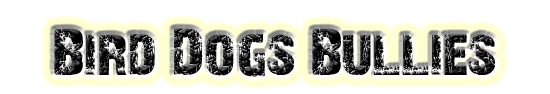 Bird Dogs Bullies - Page Title