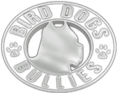 Bird Dogs Bullies